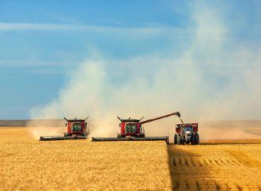 дгмо кліматичні зміни врожай